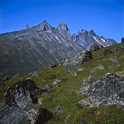 krajobraz66-05