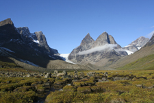 Letni krajobraz Grenlandii